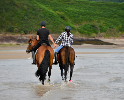Top Activities on the Central Coast
